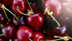 Delicious red fresh cherries closeup. Stock Footage