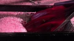 FPV 02367 Grape Harvest Machine - Bordeaux Vineyard Stock Footage