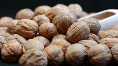 Scooping fresh walnuts in shells Stock Footage