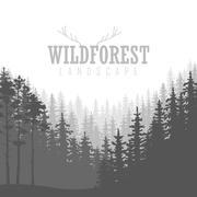 Wild coniferous forest background. Pine tree, landscape nature, wood natura.. Stock Illustration