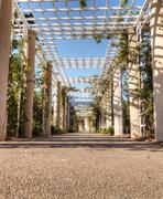 Rose garden trellis path Stock Photos