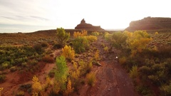 Autumn Foliage Aerial Shot of Desert Canyon at Sunset Stock Footage
