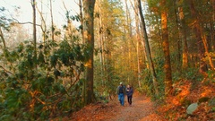 People exploring the Appalachian Trails Stock Footage