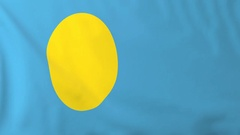Flag of Palau waving in the wind, seemless loop animation Stock Footage