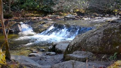 Mountain Stream With Small Waterfall Stock Footage