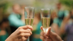 Bride and groom cheerfully clinking wedding champagne glasses, celebrating their Stock Footage