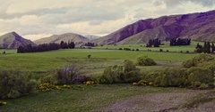 Aerial of countryside, farm and hills in the south island near queenstown Stock Footage