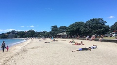 Visitors in Mission Bay Beach Auckland New Zealand Stock Footage