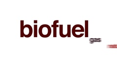 Biofuel animated word cloud. Stock Footage
