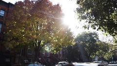 Brooklyn Brownstone - Autumn - NYC - 2016 Stock Footage