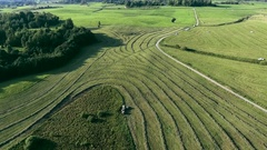 Green meadows aerial view Stock Footage