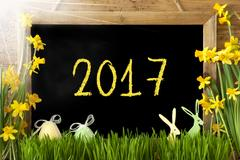 Sunny Narcissus, Easter Egg, Bunny, Text 2017 Stock Photos