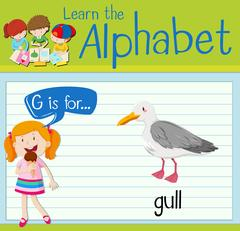 Flashcard letter G is for gull Stock Illustration