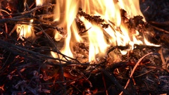 Hot fireplace full of wood and fire. Fire burning Stock Footage