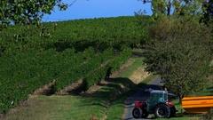 FPV 02362 Grape Harvest Machine - Bordeaux Vineyard Stock Footage
