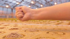 Girl planting seeds in the greenhouse industry Stock Footage