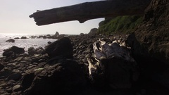 Flight through tight space on rocky beach. Stock Footage