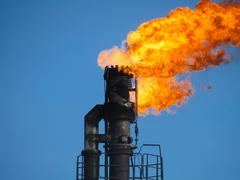 System of a torch on an oil field. Burning through a torch head Stock Photos