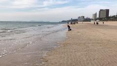 People walking on the winter beach Stock Footage