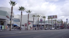 Panning across Hollywood Boulevard palm trees and Walk of Fame in LA Stock Footage