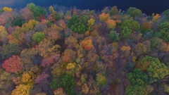 Drone footage of a lake in the wilderness during the fall 4k Stock Footage