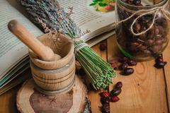 The composition from tools of natural healing herbs Stock Photos
