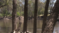 Paddle Steamer carrying tourists on the Murray River near the Port of Echuca Stock Footage