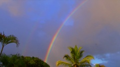 Rainbow with coconut palm time-lapse - Hawaii Stock Footage