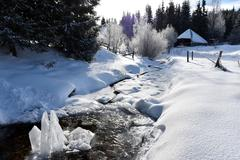 Frozen ice crystals among a small river Stock Photos