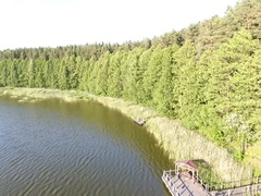 Flight along the shore of the forest lake at low altitude Stock Footage