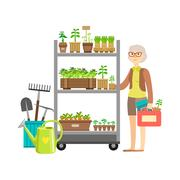 Woman Shopping For Garden Plants, Shopping Mall And Department Store Section Stock Illustration