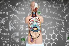Human anatomy mannequin on the background of chemical formulas Stock Photos