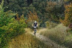 Male athlete mountainbiker rides uphill in mountain trail Stock Photos