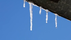 Row of icicle melting with water dripping. Stock Footage