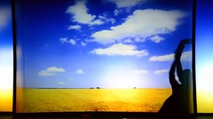 Light and shade.  The video shows the tractor on a wheat field, bread.  Stock Footage