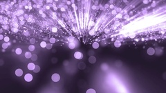 Glittering Violet Particle Background.  Stock Footage