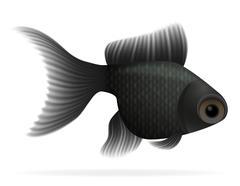 Aquarium fish vector illustration Stock Illustration