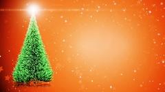 Merry Christmas card: Christmas tree with light snowflakes Stock Footage