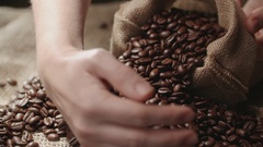 Human hands the farmer to touch high-quality coffee beans to scatter, bag jute Stock Footage