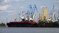 Many Cranes in the Port transshipped coals of the Vessel Stock Footage