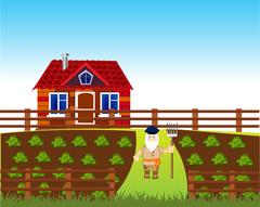 Area with vegetable garden Stock Illustration