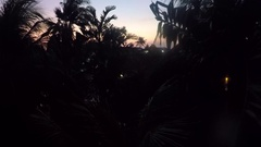 Exotic Bali view during sunset in tropical forest Stock Footage