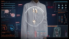 Female doctor touching screen, Scanning kidneys in digital display dashboard. Stock Footage
