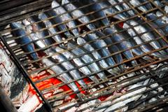 Anchovy fish grill Stock Photos