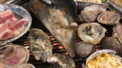 Healthy shellfish grilling on the charcoal Stock Footage