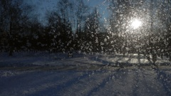 People walk during sunny and cold weather in winter Stock Footage