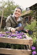 Happy woman planting flowers in back yard Stock Photos