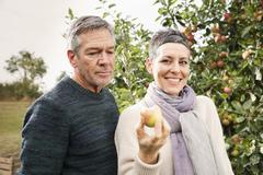 Portrait of happy woman holding apple by man in orchard Stock Photos