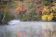 Morning mist and fall colours, River Pemigewasset Stock Photos