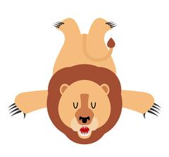 Lion skin carpet trophy Hunter isolated. African leo predator. Fur carpet Stock Illustration